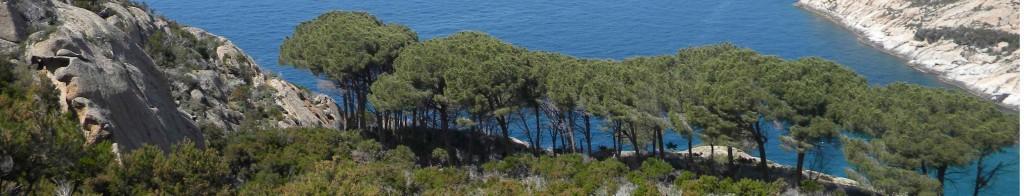 Panorama Montecristo